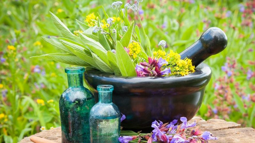 Top 6 Fabulous Antifungal Essential Oils For Fighting Fungal Infections