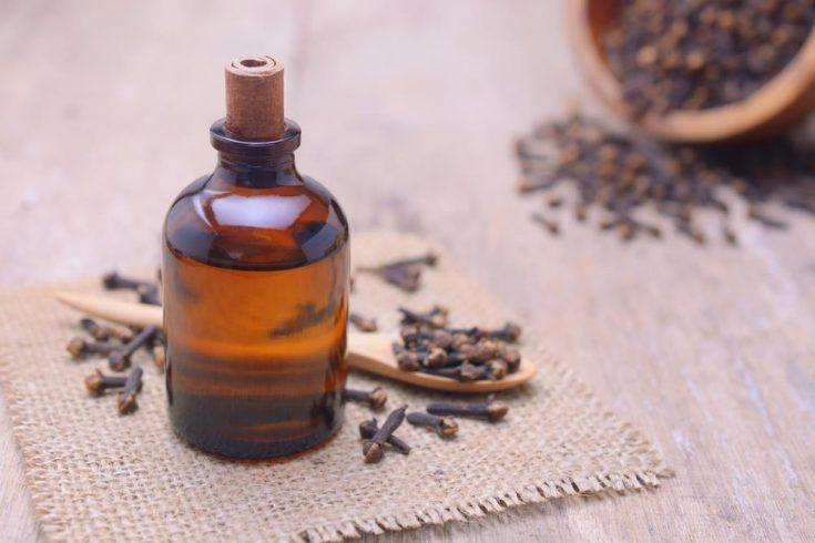antifungal essential oils clove