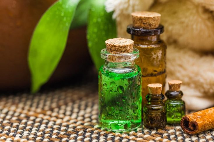 green tea oil