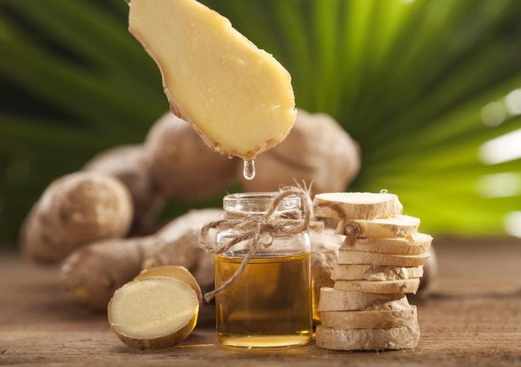ginger essential oils for nausea