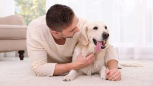 Home Remedies for Mange In Dogs: Symptoms, Causes And Treatment