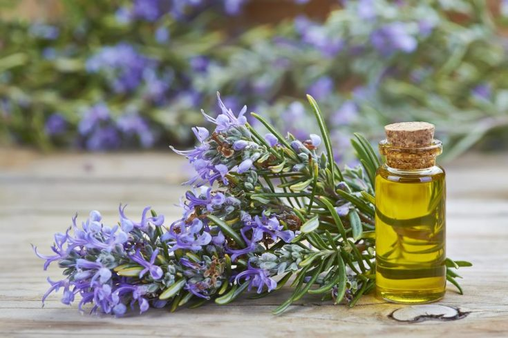 lavender oil for energy