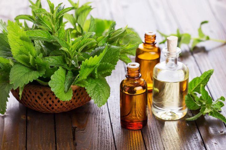 essential oils for treating earaches