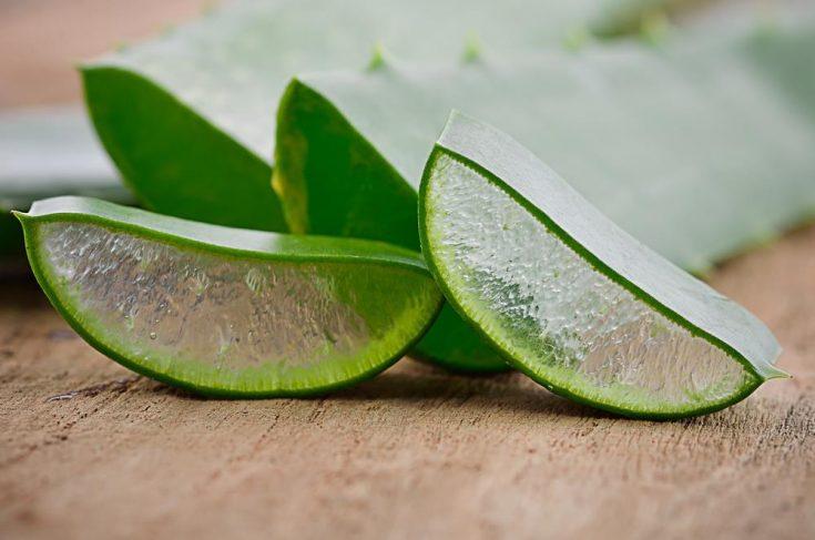 Moisturizing Scalp With Aloe Vera Gel