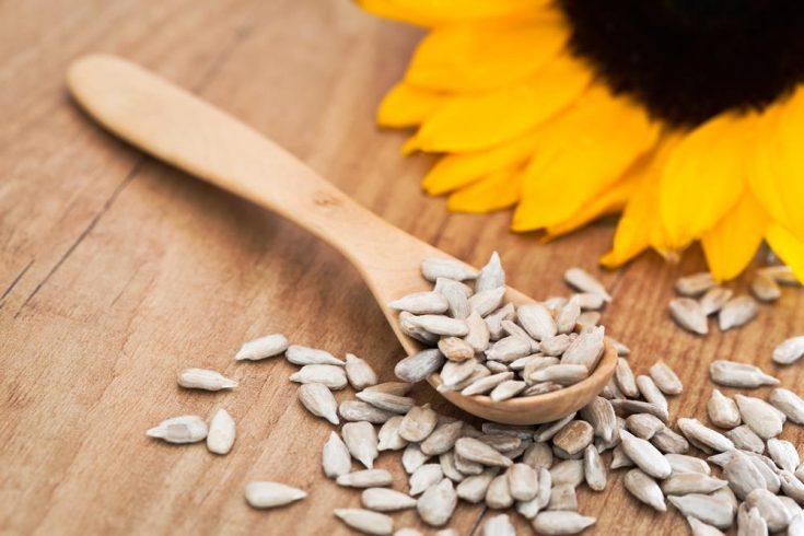 sunflowers seeds