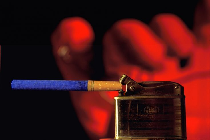 nicotine is absorbed into the bloodstream
