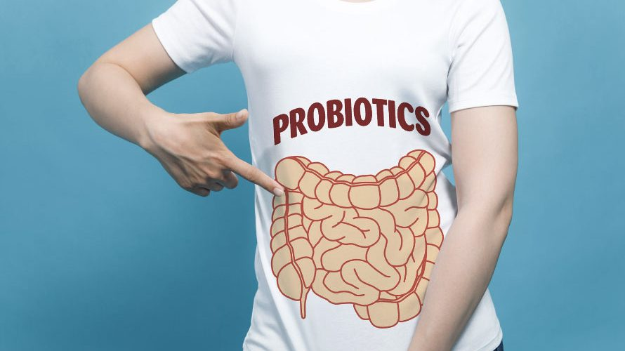 How Long Does It Take For Probiotics To Work?