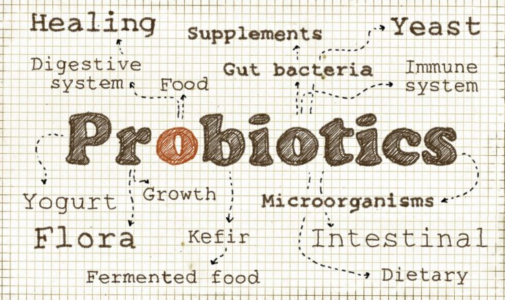 Probiotics are live microorganisms or yeast similar to helpful bacteria