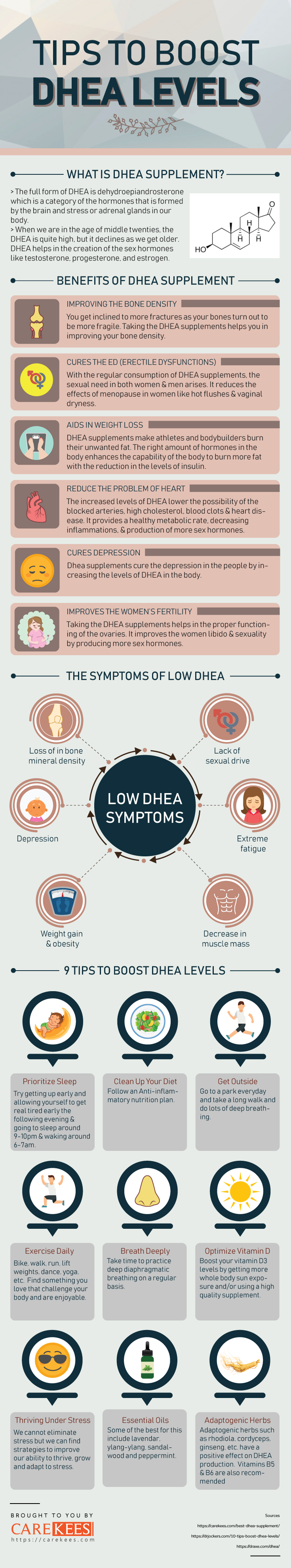best dhea supplement 1