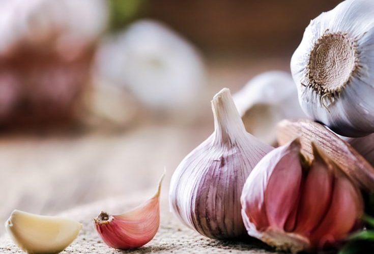 Garlic is a very common ingredient